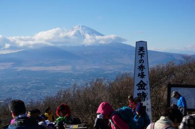明日は晴れ!天下の秀峰 金時山(きんときやま)へ行こう!