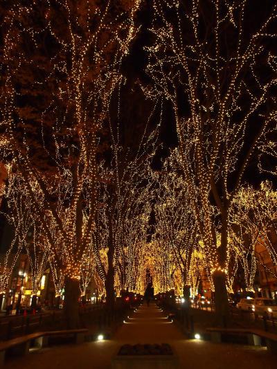 今年も・・・心あたたまる光のトンネル ☆SENDAI 光のページェント2015☆