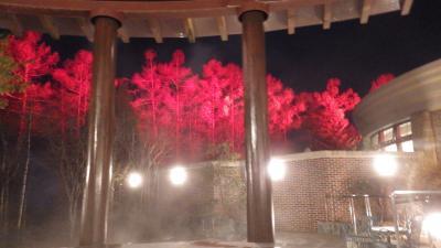 2015年11月、エクシブ蓼科(夜の温泉)