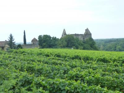 黒い森とアルザス・シュヴァーベン地方の旅⑮紀元前2000年の頃に既に城塞があったと云う小さな村ブルクハイムを再訪した。