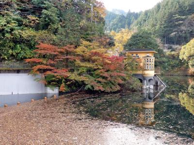 毛呂山・鎌北湖の紅葉