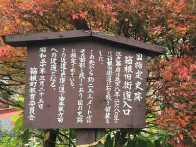 箱根旧街道。廃墟、ヤマネコ、獣道、、、