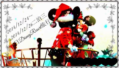 ☆2014年最後のパーク ディズニーリゾートで誕生日祝い Part1☆