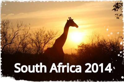 南アフリカ・ヨハネスブルグ&クルーガーでサファリ