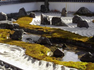徳山駅からの旅 ~周南冬のイルミネーションを見て北へ