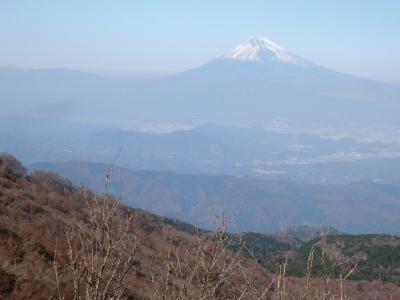 日本百名山・天城山と青木ヶ原樹海<2> (天城山)