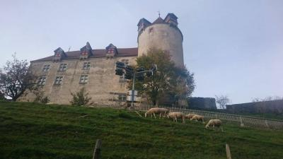 色づいたブドウ畑を通って、グリュイエール城へ【スイス情報.com】