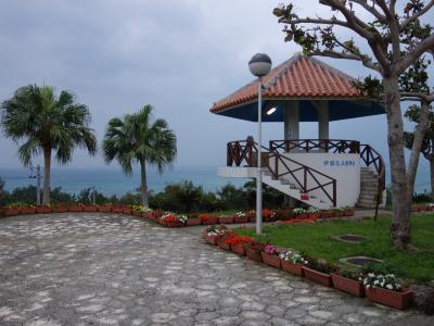 沖縄自動車道を許田から那覇南まで走り,国際通りを目指す。