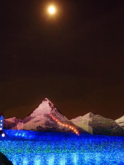 なばなの里4/6 冬華の競演 マッターホルン*月光 ☆アルプスの記憶よみがえり