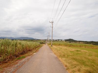 冬の八重山強運のひとり旅☆第一部~石垣島&小浜島~
