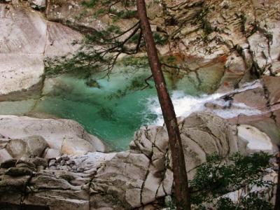 日本一の水質の渓谷支流(純信の終焉の地と日本最高水質の渓谷の支流・後編)