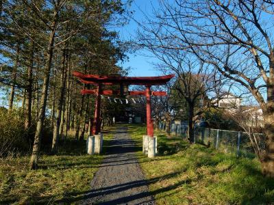 歳末 広い関東平野 加須市 今鉾集落を少しだけ歩く