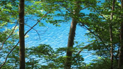 志賀高原の湖、琵琶池と大沼池を巡り温泉に浸かりカラオケでハジケル一泊二日の旅