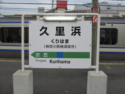 今更ですが、横須賀線完乗しました。