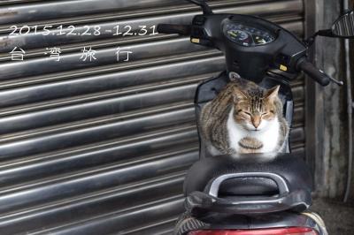 ●女友達と3泊4日年末初台湾旅!~②3日目台湾鉄道で猫の村猴トンと天燈の十分へ●