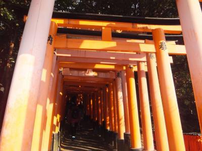 2016初詣!京都の寺社巡り
