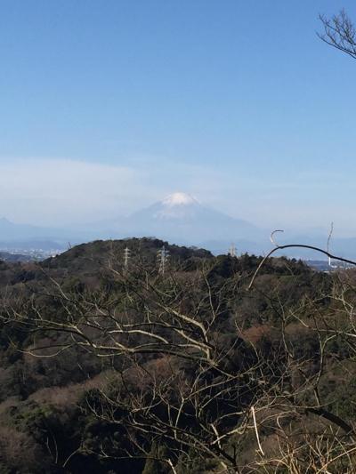 天園:横浜森の家~瑞泉寺