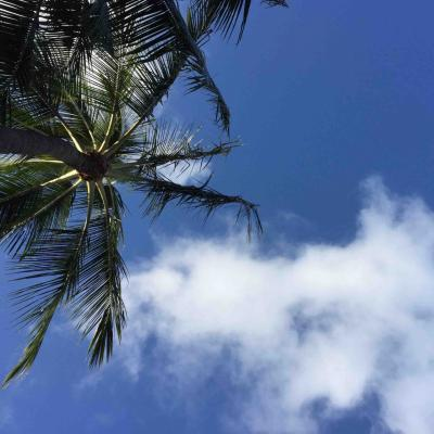 ハワイでSIMフリー その1 Apple SIMにはがっかりだぜ