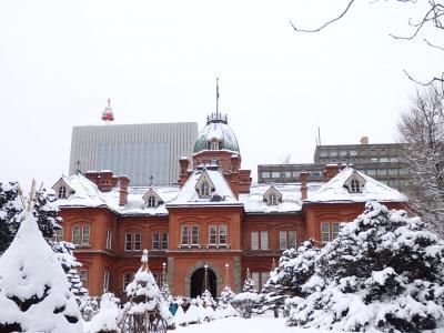 冬の札幌・フィギュアスケートと動物園でもふもふの旅