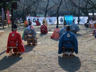 平成28年 初詣 志茂熊野神社 靖国神社 神楽坂の赤城神社へ
