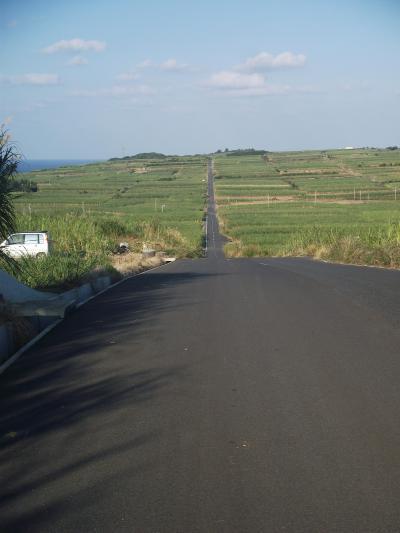 南の島の天に続く道