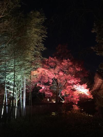 京都・嵐山花灯路2015