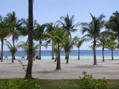 【支払金額を全部表示してみました】パングラオ島でビーチリゾート(後半はボホール・ビーチ・クラブとシャングリラ・セブ後泊編)