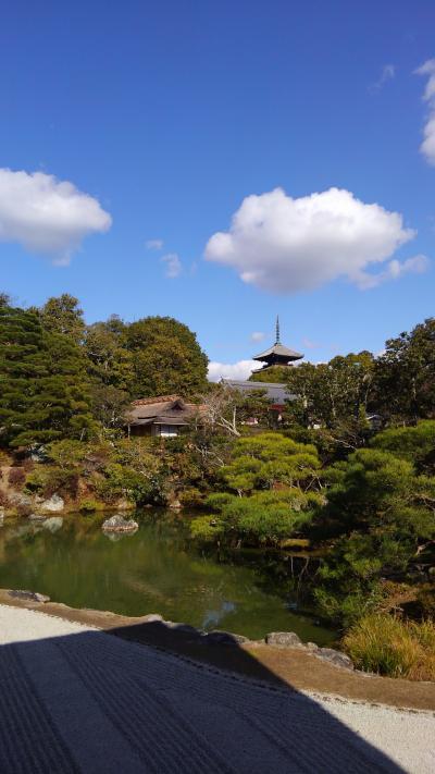 新春京都、宇治に伏見の散歩旅1
