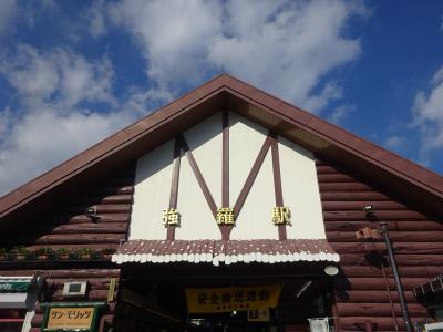 久しぶりの箱根へ~ロマンスカーと箱根登山鉄道でサクッと楽しく行ってきました~