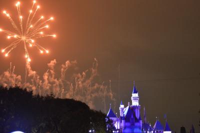 Las Vegas&Disneyland