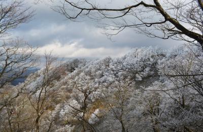 鈴鹿・綿向山の樹氷林