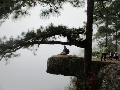 タイのイサーンと北部ベトナムの旅(10)         プー・クラドゥン(Phu Kradung)ハイキング
