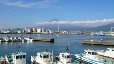 田子の浦港で生しらす丼