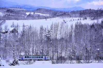 冬の北海道、道北地方を巡る旅 ~白銀の美瑛(上富良野)の丘を見に訪れてみた~
