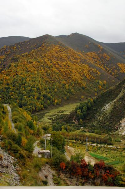 2013年中国新疆放浪記066・先ずは西寧、そして蘭州へ!参