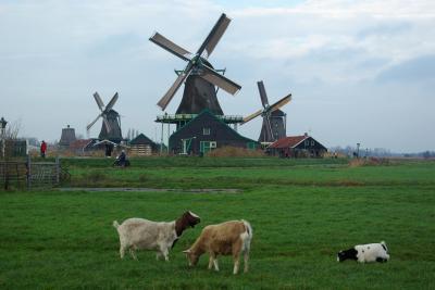 オランダの風車を見に、アムステルダム郊外のザーンセ・スカンスへ。たかが風車といえど、素晴らしい風景画の世界です。