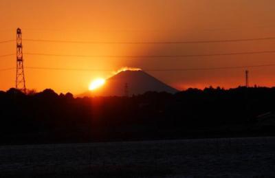手賀沼から見る富士山と鳥見