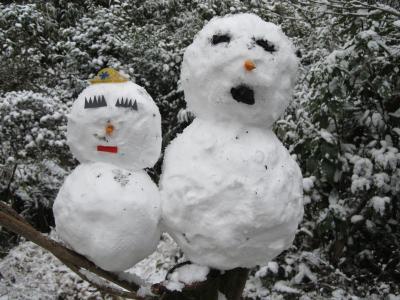 I had heavy snow on 24th Jan. (5年ぶりの大雪)
