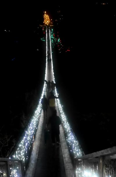 2015.12バンクーバー学会旅行3-Capilano Suspension Bridge のライトアップ