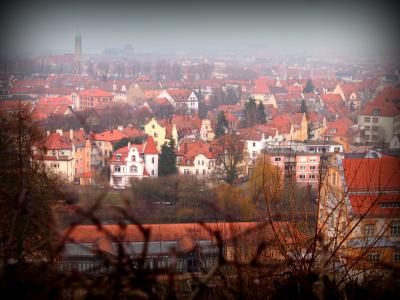 《2015年~2016年 年末年始 冬枯れのドイツ 6》 1月1日 バンベルク旧市街 高台より