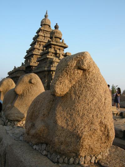 南インド旅行記~ドラヴィダ文化の中心地へ~ その4