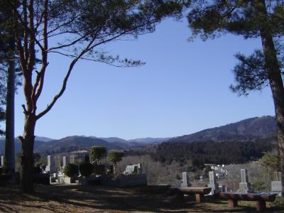 40年目で実現した墓参り