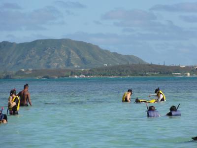 ハワイに真冬の逃避行11日間(5)