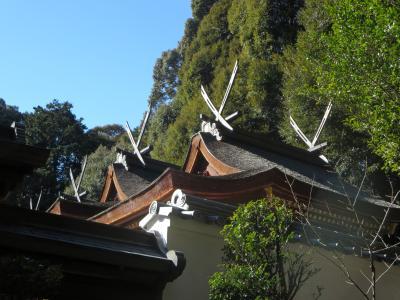 1人で歩く冬の奈良☆往馬大社(いこまたいしゃ)☆優しい人々、ワンコとのふれあいがありました(*^_^*)