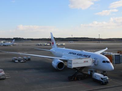 【JGC修行2015】JALグローバルクラブへの道★5−4「リニューアルしたB787でインドへ!」編