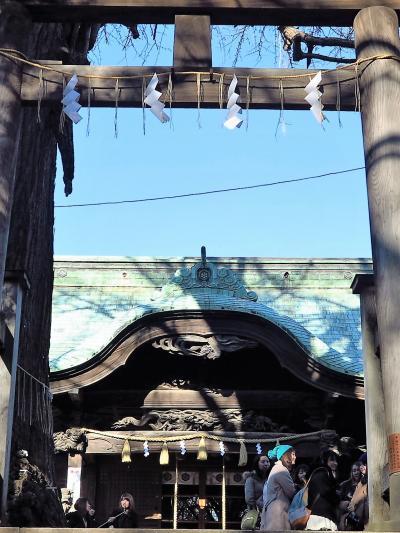 新京成ハイク3/3 二宮神社・第一空挺団前を通り ☆ゴールは北習志野駅