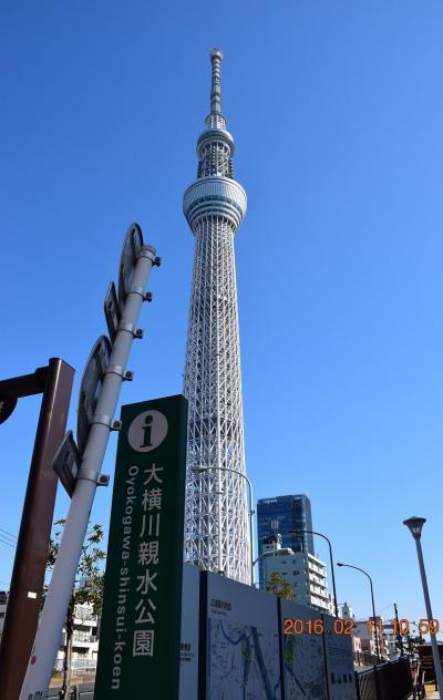 【東京散策47】 スカイツリー近くにある南北約2kmの細長い大横川親水公園