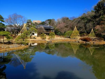 リニューアルオープン・新江戸川公園2