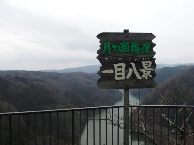 月ヶ瀬梅林・真福寺・高山ダム2016