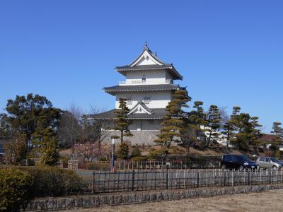 武蔵加須 関東の要で勢力の境目ゆえ幾たびの戦禍に遭うも平城ながら四方を沼に囲まれた難攻不落要害騎西城訪問
